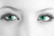 canvas print picture - Grüne Augen