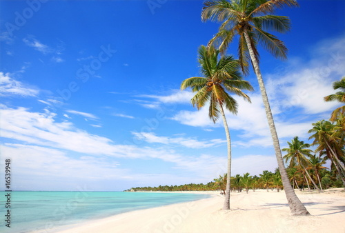 Foto op Plexiglas Caraïben WHITE SAND BEACH
