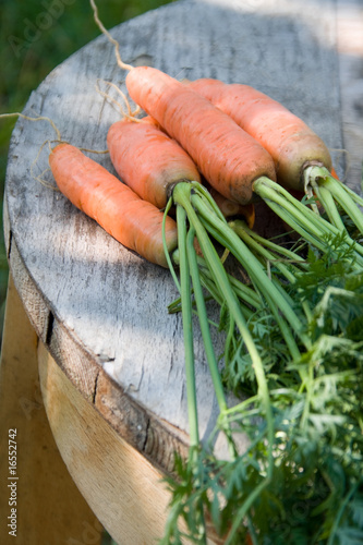 Keuken foto achterwand Groenten Carrots over the old aged wood table in the garden