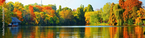 Poster Honey Autumn landscape