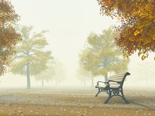 Lonely Bench On Autumn Path