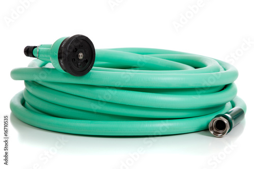 Fotografie, Obraz  Green Garden Hose with Sprayer
