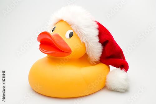 Vászonkép Santa Duck