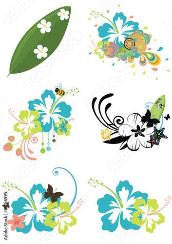 Six design elements with Hawaiian flowers on summer theme #16756995