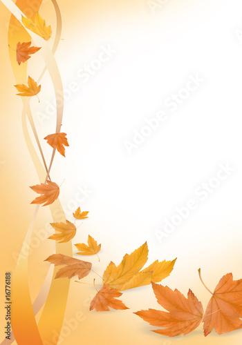 jesienne tło i liście