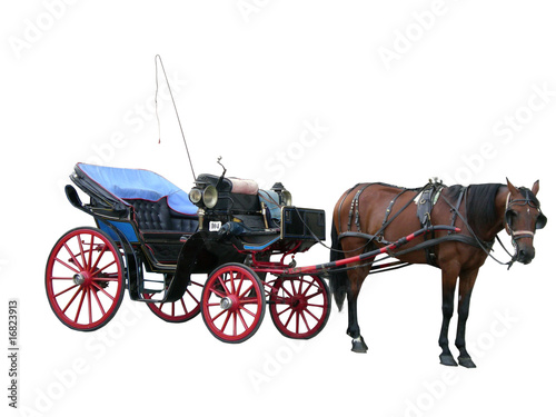 Photo carrozza con cavallo