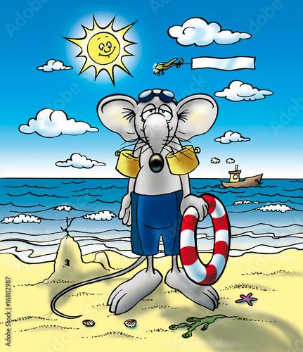 Zdjęcie XXL Maus am Meer Mysz nad morzem