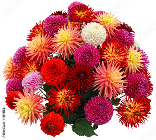 Fotomural Flower arrangement of chrysanthemums and dahlias