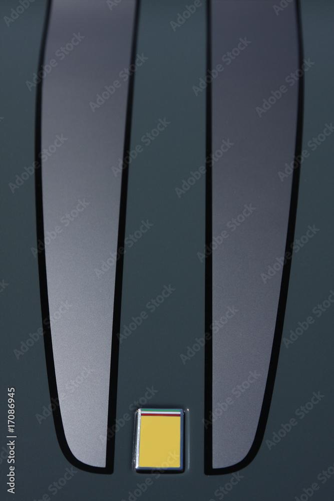 Fotografie, Obraz racing stripe