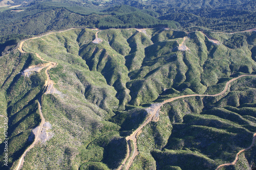 Forestry Slopes from the Air Wallpaper Mural
