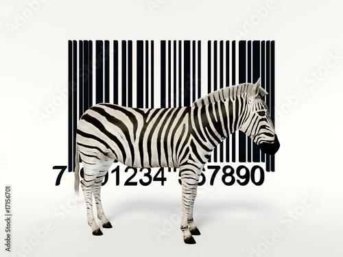Tuinposter Zebra creative zebra