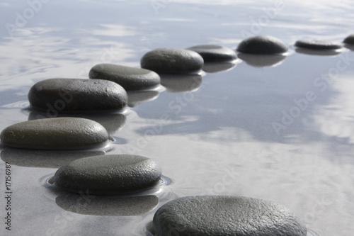 Fotografía  stepping stones