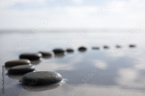 stepping stones - 17156990