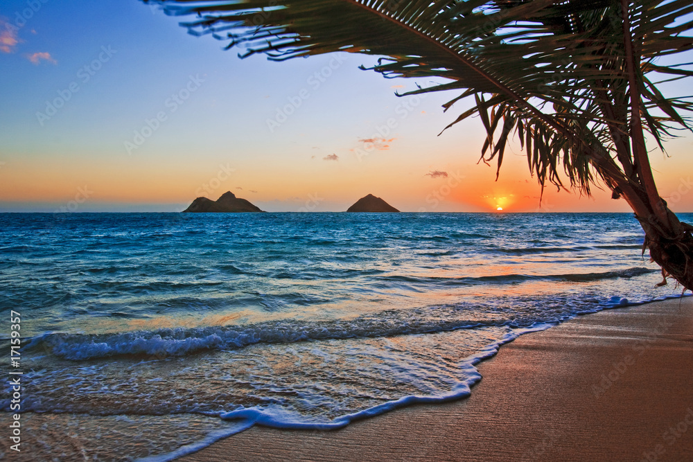 Fototapeta Pacific sunrise at Lanikai beach, Hawaii