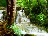 wodospad w głębokim lesie - 17195152