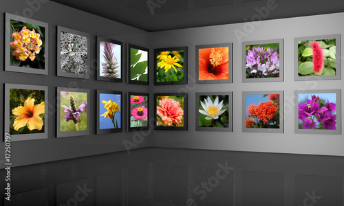 Fototapeta Flower photography gallery exhibition hall concept obraz