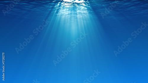 Obraz Underwater scene - fototapety do salonu