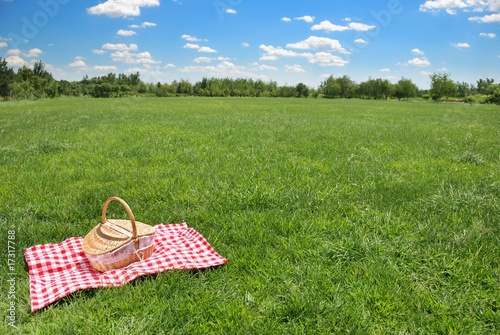Deurstickers Picknick picnic setting on meadow with copy space
