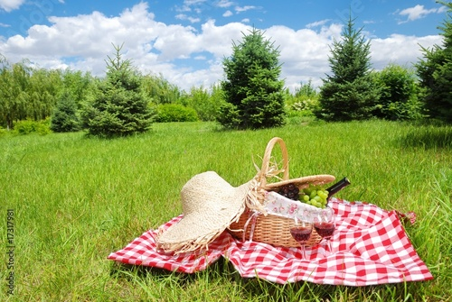 Aluminium Prints Picnic picnic