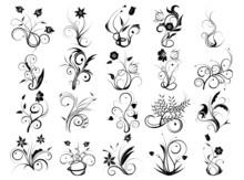 Nature - Vecteurs De Fleurs
