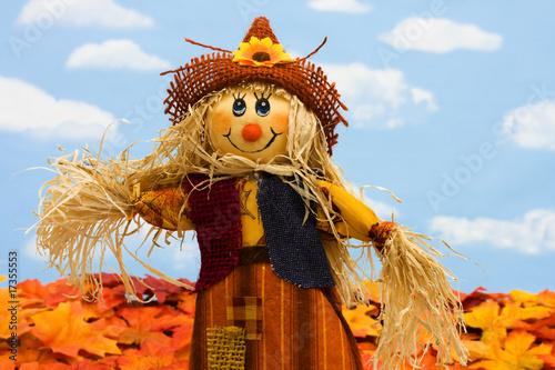 Fototapeta Scarecrow