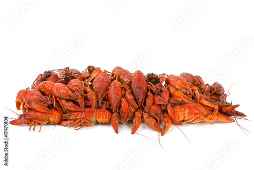 Pile of boiled crawfishes