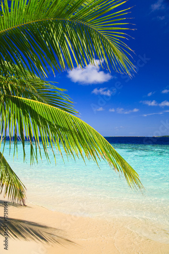 Foto-Kissen - Tropical Paradise at Maldives (von Anobis)
