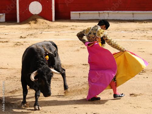 Corrida Matador & Bull