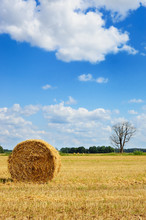 Picturesque View Of Round Hay ...
