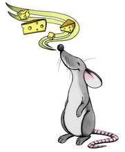 Maus, Ratte, Feinschmecker, Käse, Essen