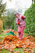 Little Girl Rake Autumn Leaves In Garden