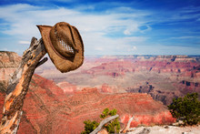 Hat Hung On A Branch Near The Grand Canyon