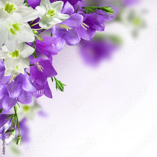 Doppelrollo mit Motiv - flowers