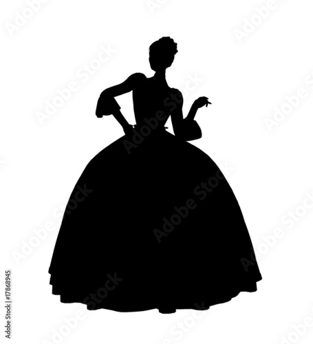 Fotografie, Obraz  Cinderella Silhouette Illustration