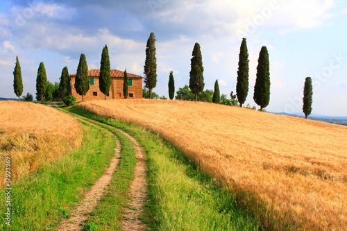 Foto op Plexiglas Toscane Weg, Zypressen, Haus, Wolkenhimmel, Toskana, Italien