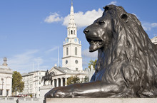 Statue Of A Lion In Trafalgar ...