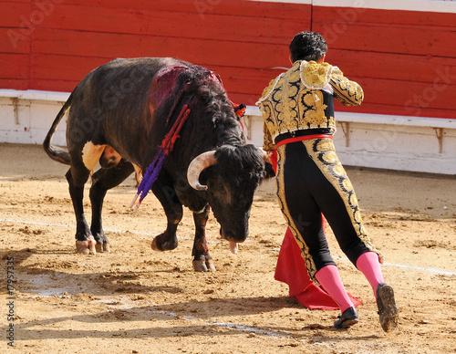 Foto op Aluminium Stierenvechten Bull & Matador