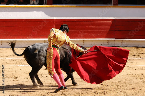 Matador with Cape