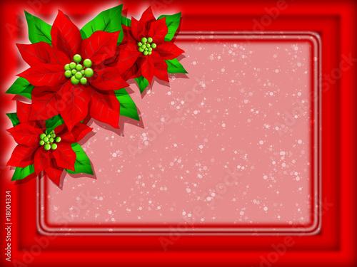 Stella Di Natale Auguri Christmas Card Fleur Damour Noël