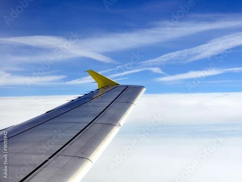 Flug Billede på lærred