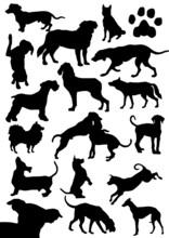 Hunde Silhouetten