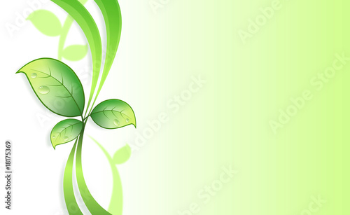 Poster Vegetal Plant background