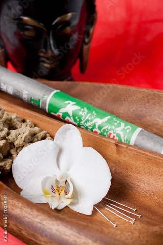 Fotografie, Obraz  Orchid flower with accupuncture needles and Moxa