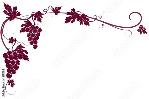 Fotografiet  Sfondo tralcio uva rossa