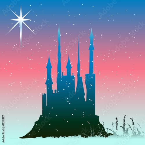 Staande foto Kasteel Winter Castle