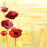 Painted poppies background
