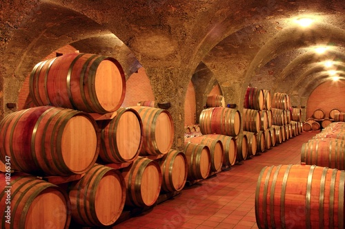 Weinkeller, Eichenfässer, Montalcino Toskana, Italien Fototapeta