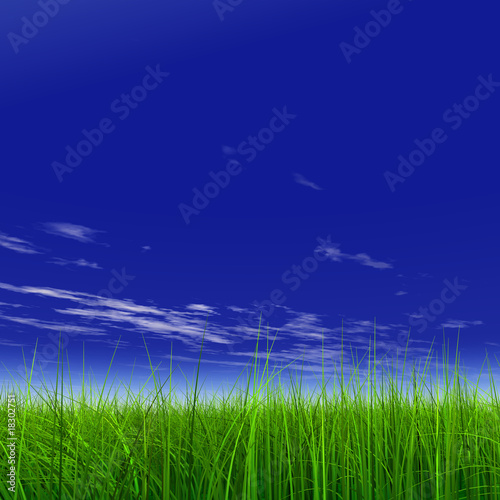 Foto op Canvas UFO green grass over a blue sky with white clouds as background