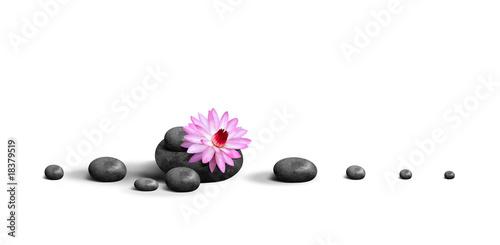 Door stickers Lotus flower Serenite et Plenitude