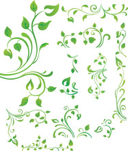 Vector Collection Of Green Branches With Leaves.